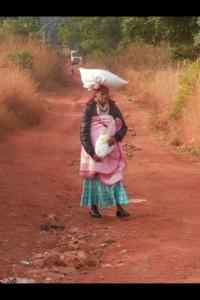 Swazi 2013