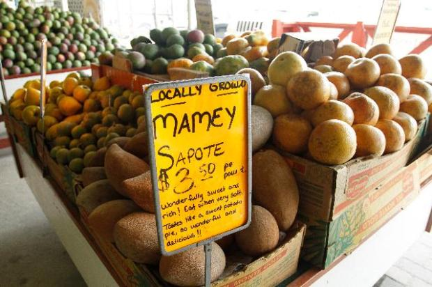 mamey-fruit-stand